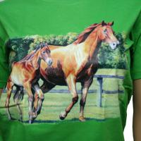 BOY T-SHIRTS GREEN WITH HORSE
