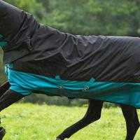 PADDOCK MIO HORSEWARE TURNOUT RUG 200 gr ALL IN ONE