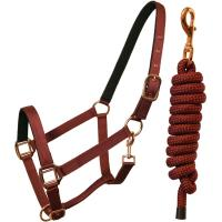 REINFORCED NYLON HALTER WITH COMBINED LONGE - 0332