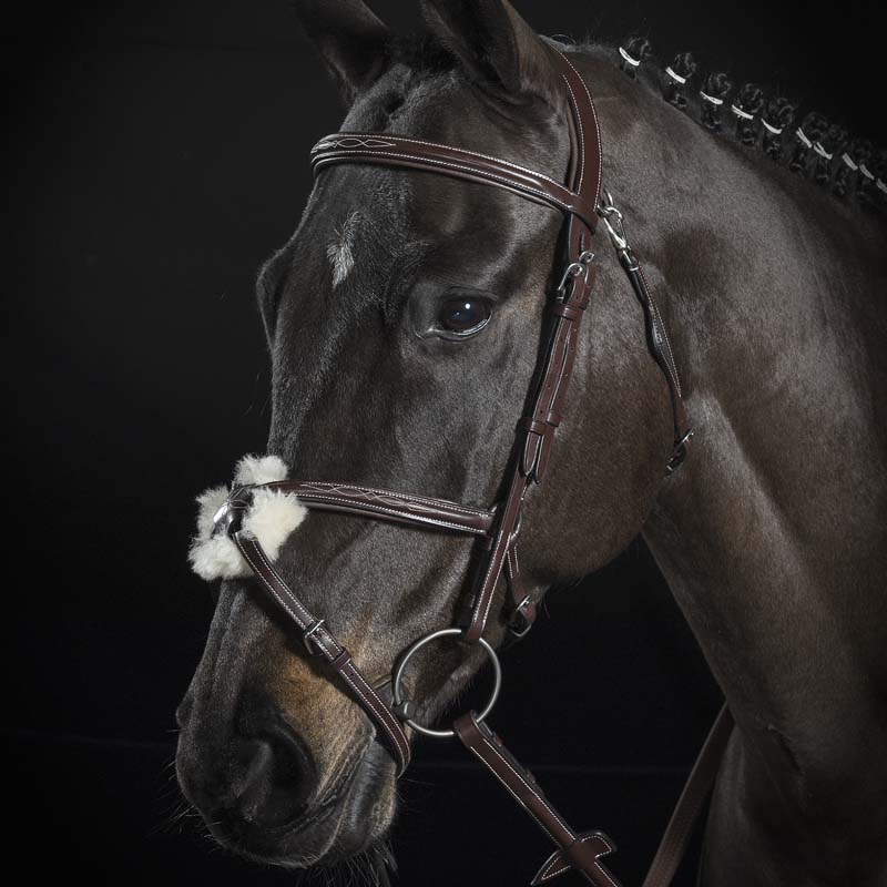 MEXICAN BRIDLE EQUILINE PREMIUM LINE WITH REINS