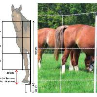 ELECTRIFIED NET FOR HORSES AND CALVES, 30 MT