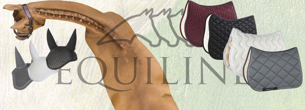Find Out the New Equiline Items for your Horse!