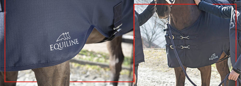 Equiline Waterproof Turnout Rug: take advantage now!
