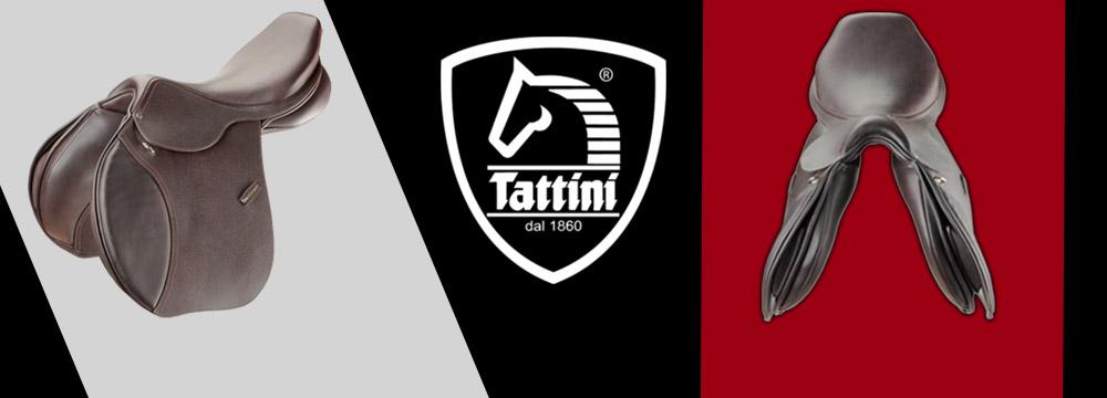 Daslo Gold Saddle by Tattini: improved close contact!