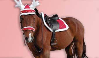 Xmas HorseAccessories